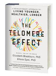 The Telomere Effect by Elizabeth Blackburn PHD
